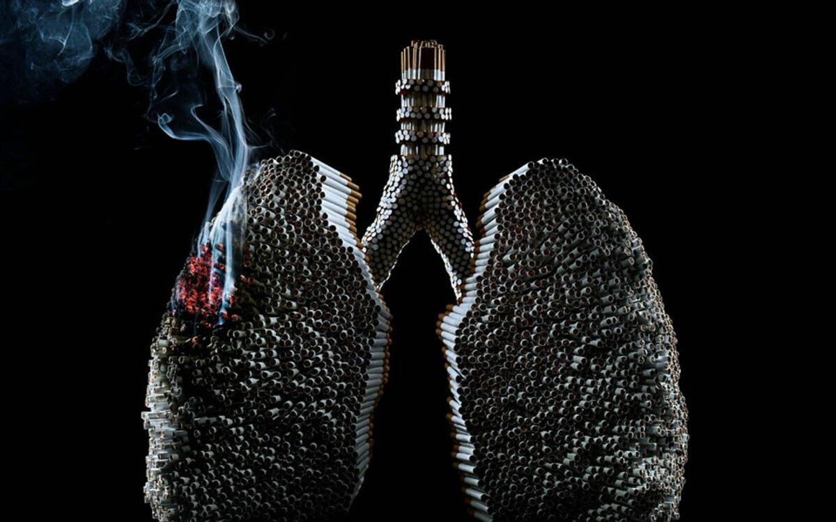 складывается дым в легких картинки расшифровывается слон