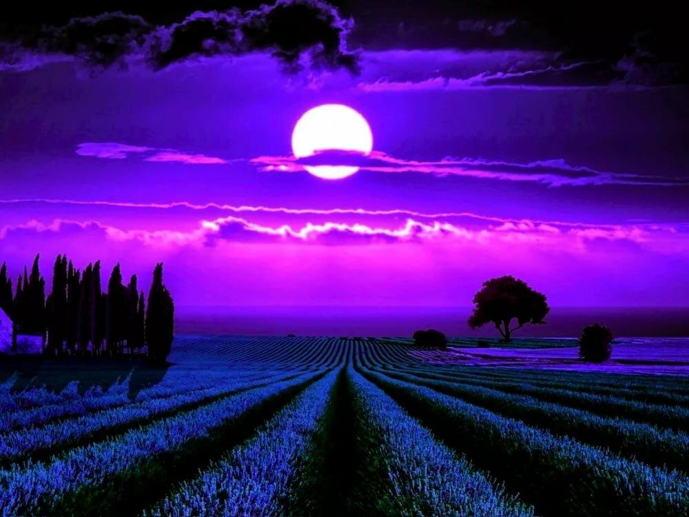 для разбавления ночная луна в поле фотографии секрет, что
