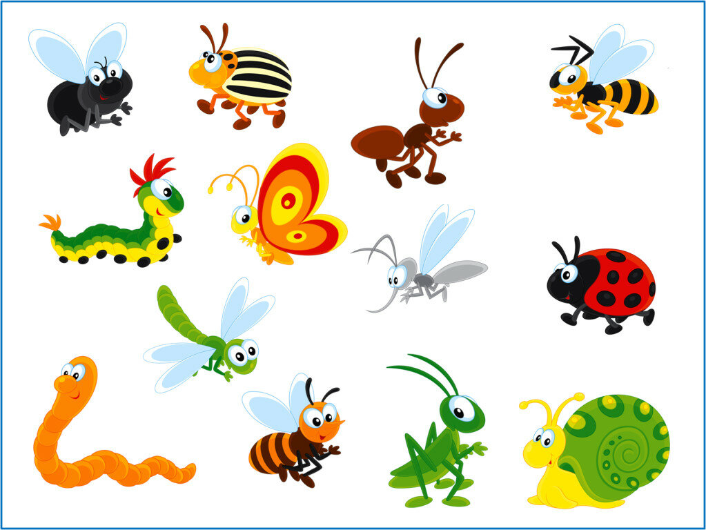 Открытками, насекомые картинки для детей дошкольного возраста