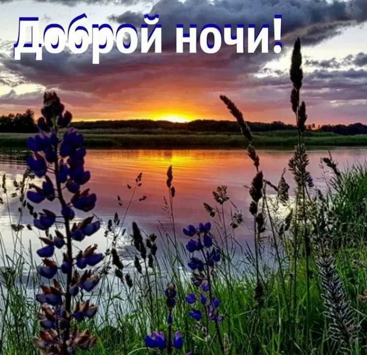 Картинки спокойной ночи весна