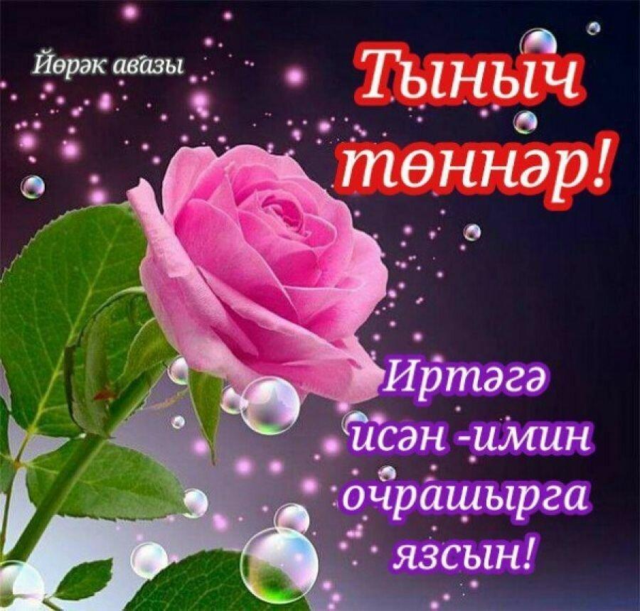Днем рождения, на татарском языке открытка спокойной ночи