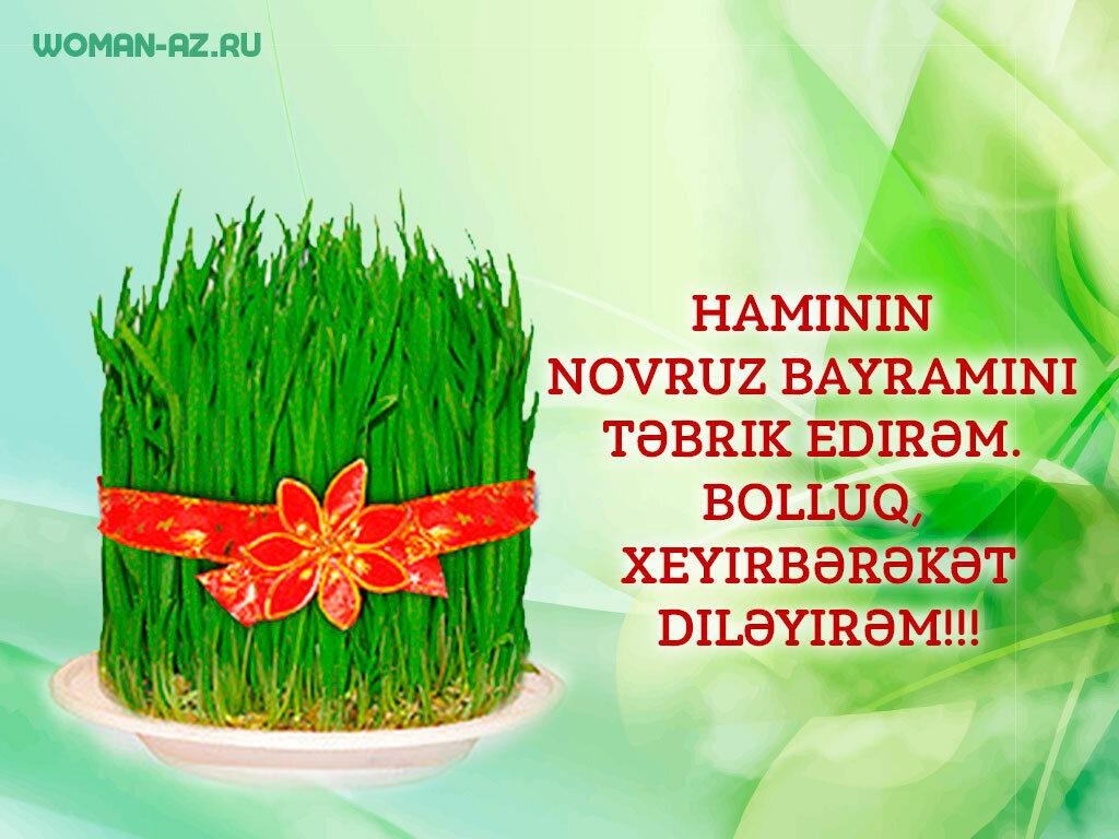 Навруз поздравления картинки на азербайджанском, цветы картинки