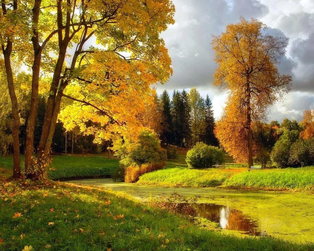 Осень ранняя картинки красивые