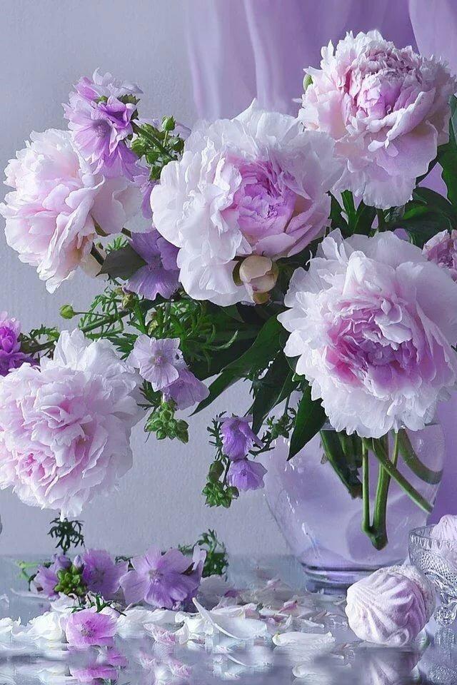 Открытки ссср, открытки с добрым утром самые красивые с цветами