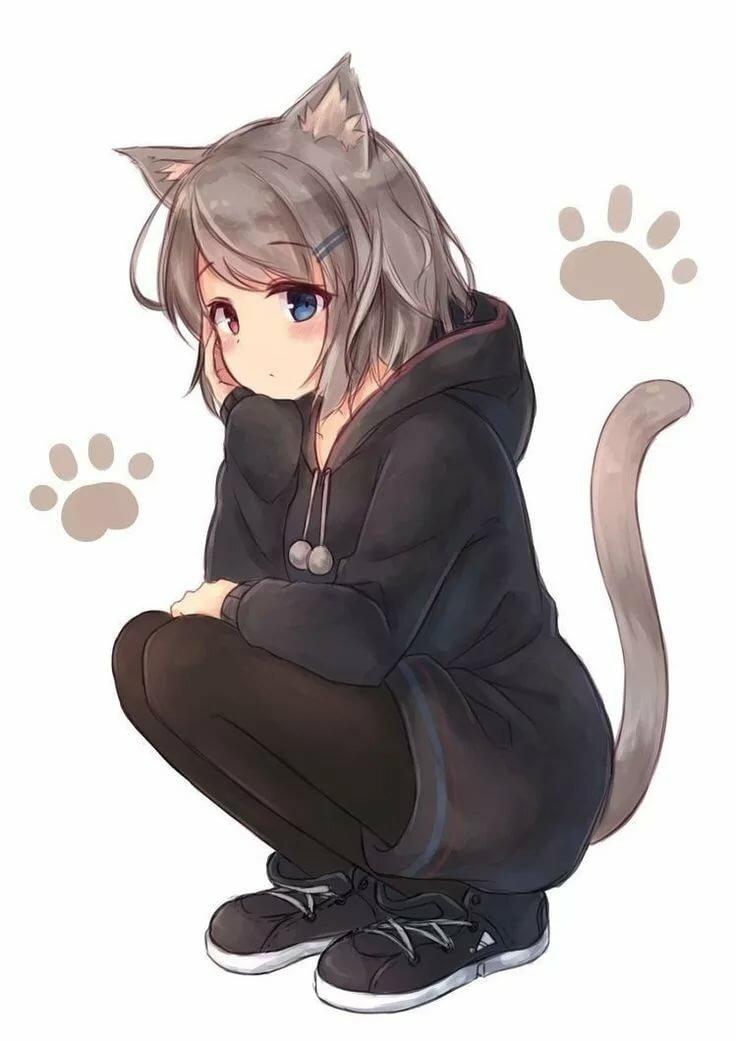 Неко кошка картинки
