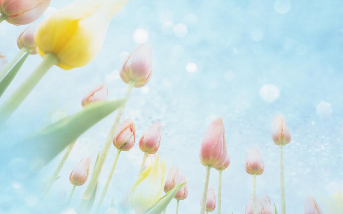 Весенний фон открытка, анимацией днем святого