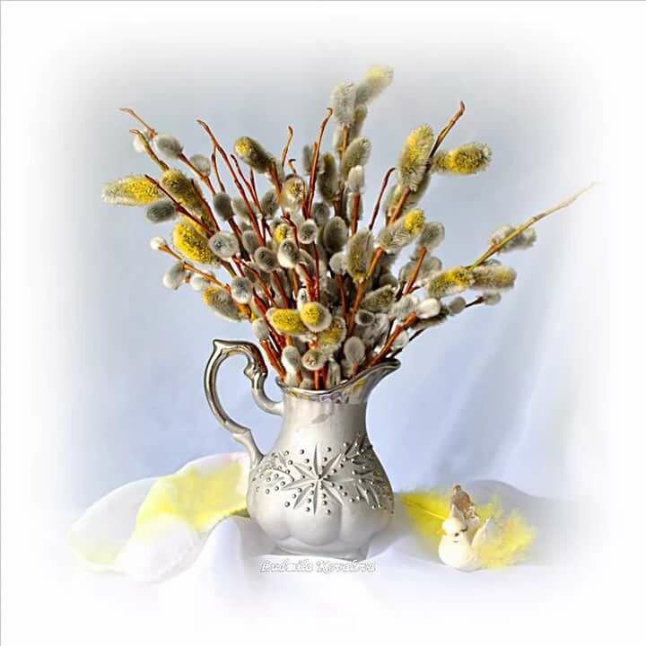 картинки ветка вербы в вазе