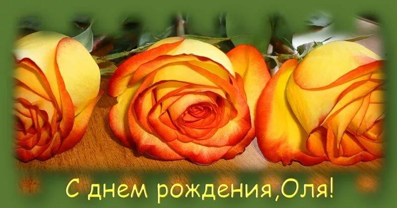 Плейкаст красивые поздравления с днем рождения оля прекрасно