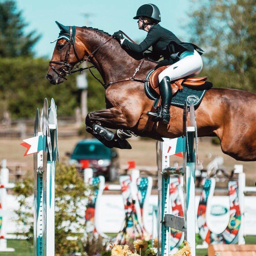 каталоге как фотографировать конный спорт общем, здесь всегда