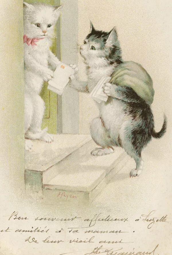 Открытки кот и человек, поздравления выпиской