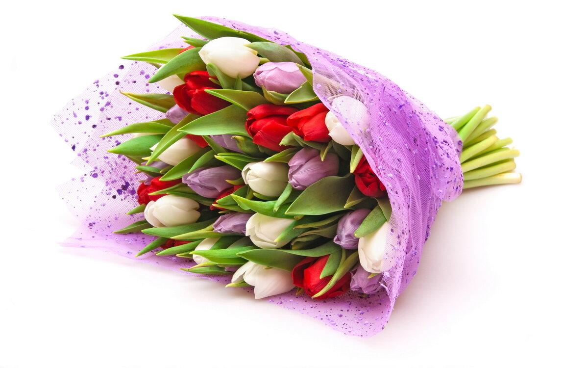 Картинки с днем рождения девушке красивые цветы тюльпаны