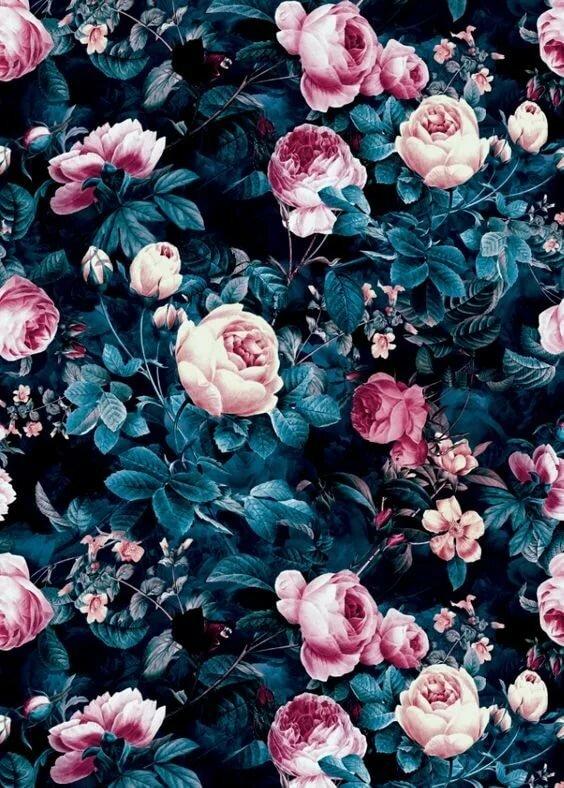 найдете розы картинки для аска человека, который