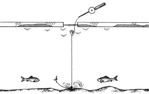 Зимняя ловля плотвы на поплавочную удочку