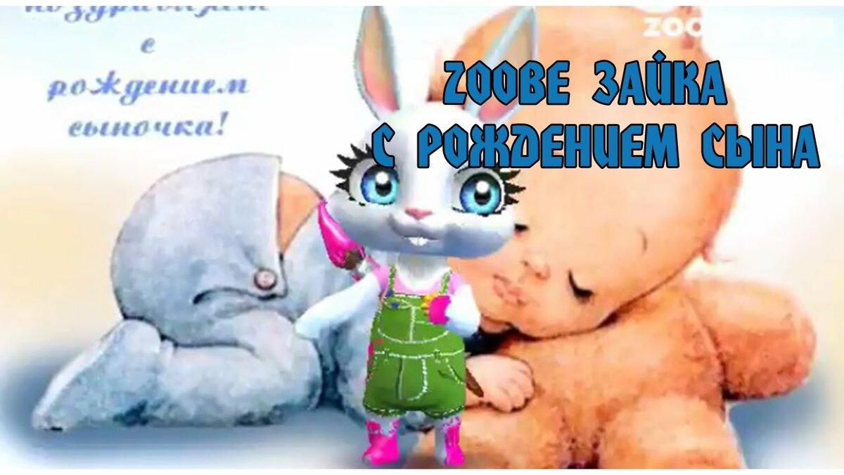 готовите поздравление зайца с днем рождения сына вам