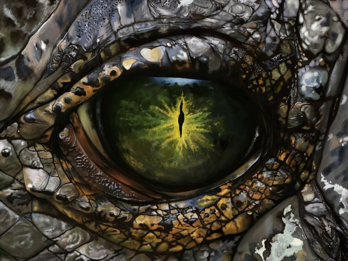 Глаза дракон картинки