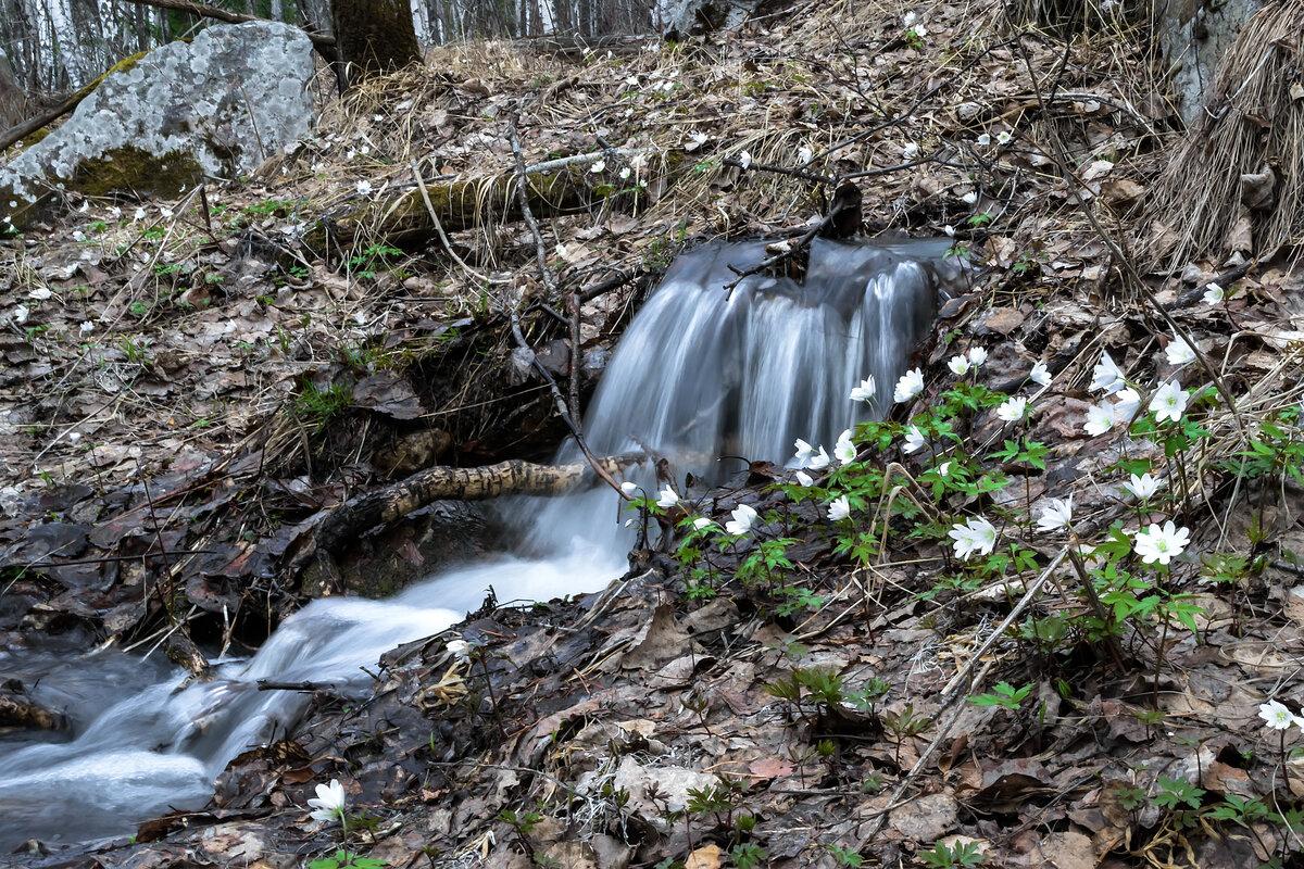 Картинка весна и ручьи