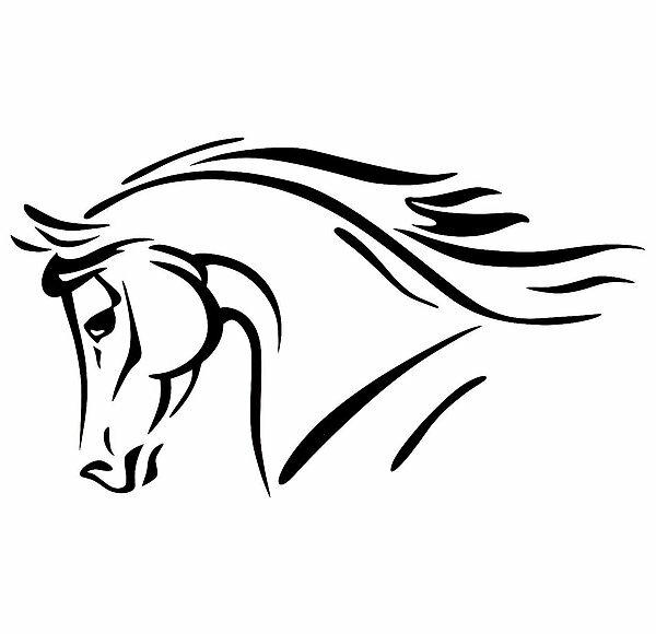 Нарисованная голова лошади в картинках