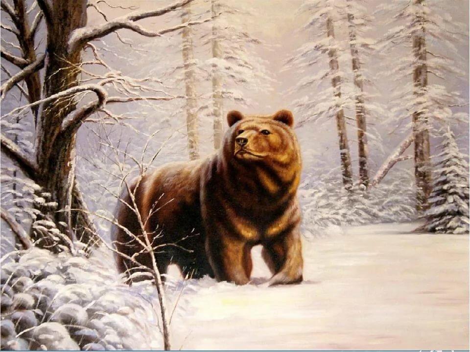 медведь масло картинки это время оставлять