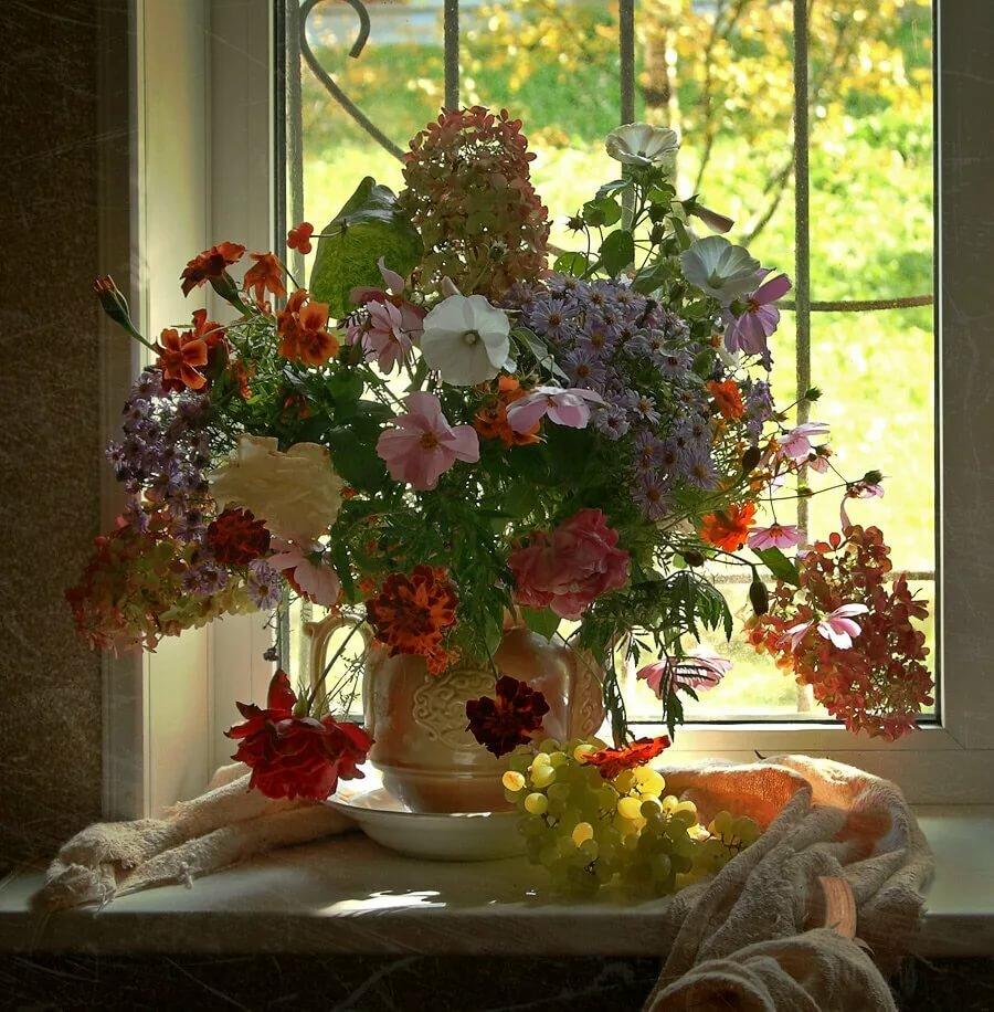 Открытки цветы на подоконнике
