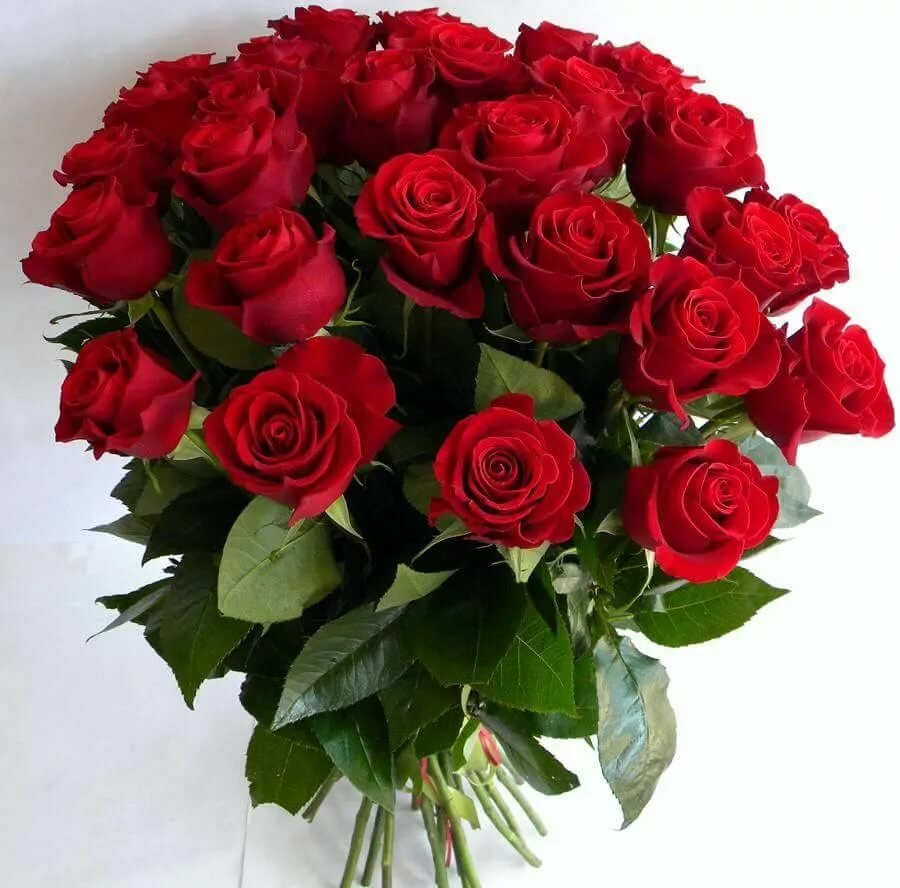 Фото розы красивые букеты с днем рождения картинки