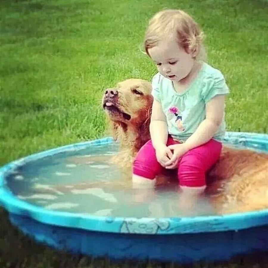 Прикольные картинки детские с животными