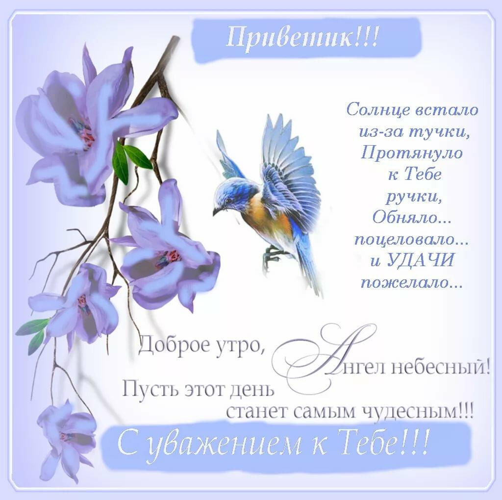 Открытка с добрым утром ангел мой, поздравления пасха