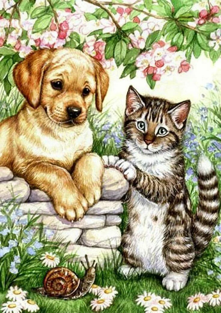 том, рисунок про кошек и собак для