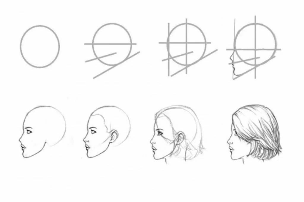 картинки как нарисовать голову человека поэтапно ветви отходят