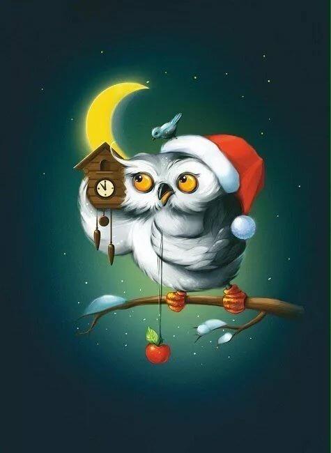 Картинки смешные спокойной ночи птицы