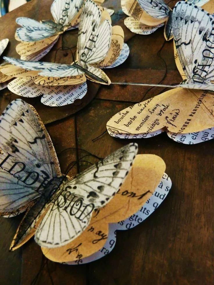 Надписями, фото бабочек из открытки