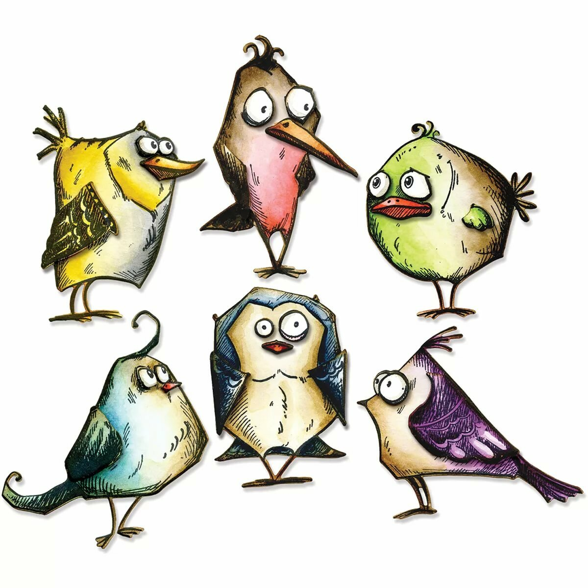 Птицы в смешных рисунках