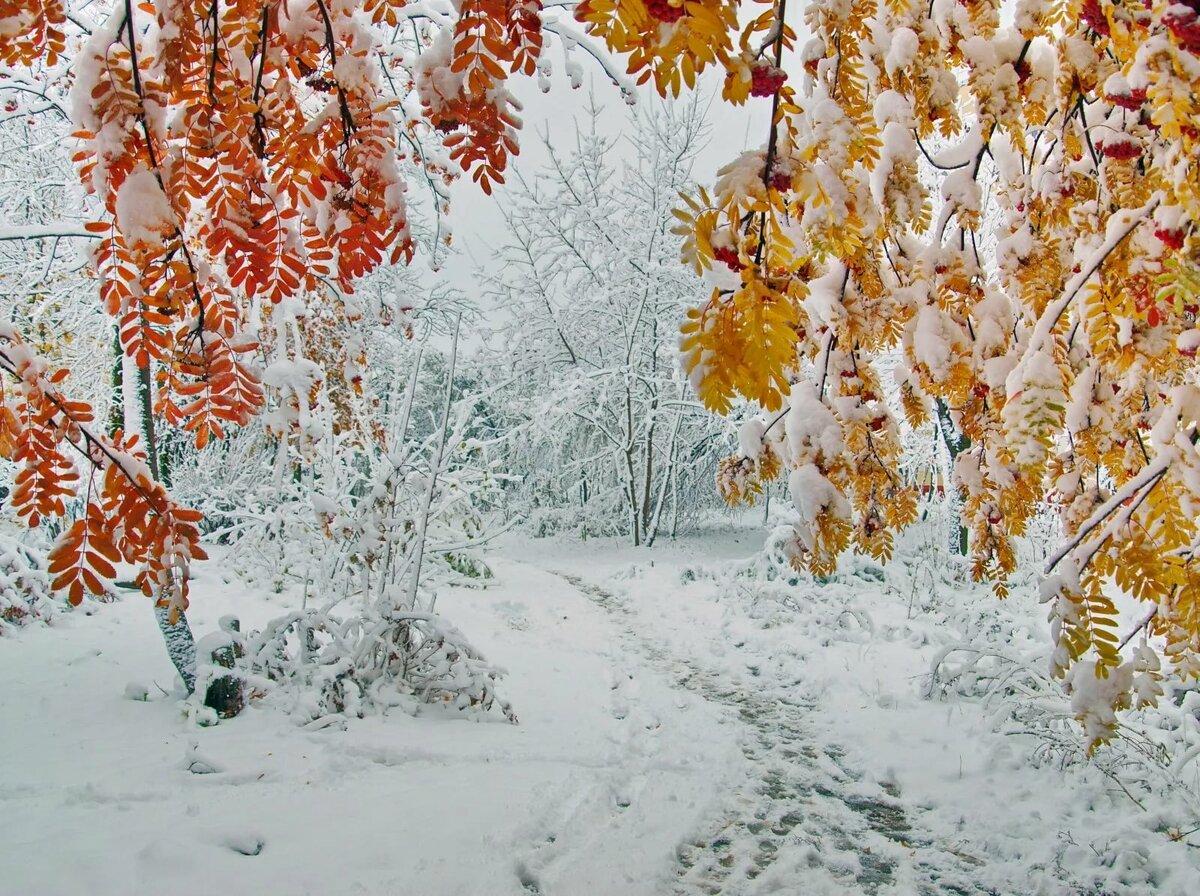 как много осень картинки со снегом крыши стены