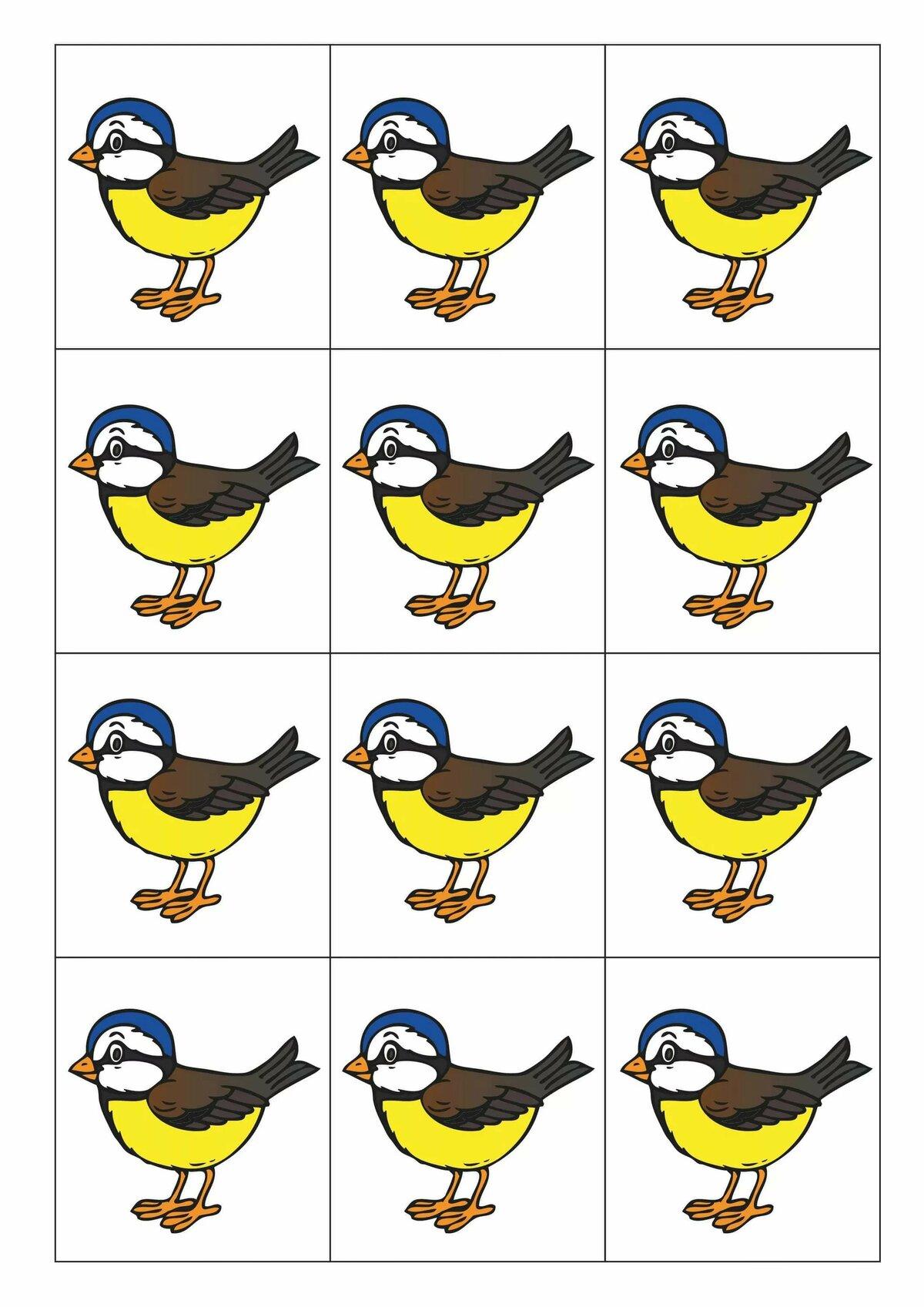 птицы демонстрационный материал истории убийств
