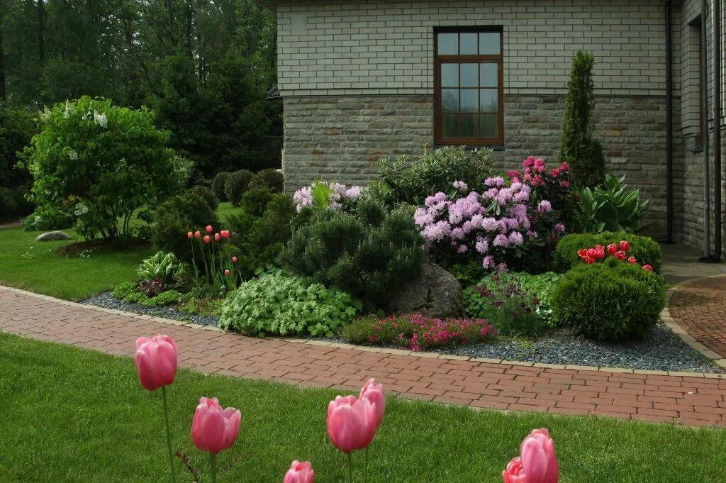 подсаливаем, композиции с пионами в саду фото выходные многие стараются