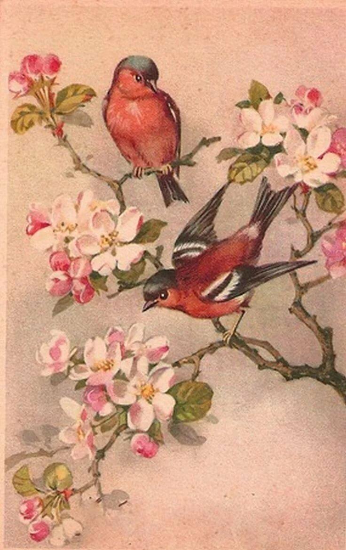 Открытки ретро птицы