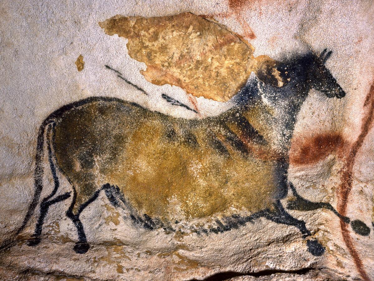 Пещера Ласко. Изображение лошади из Осевого прохода