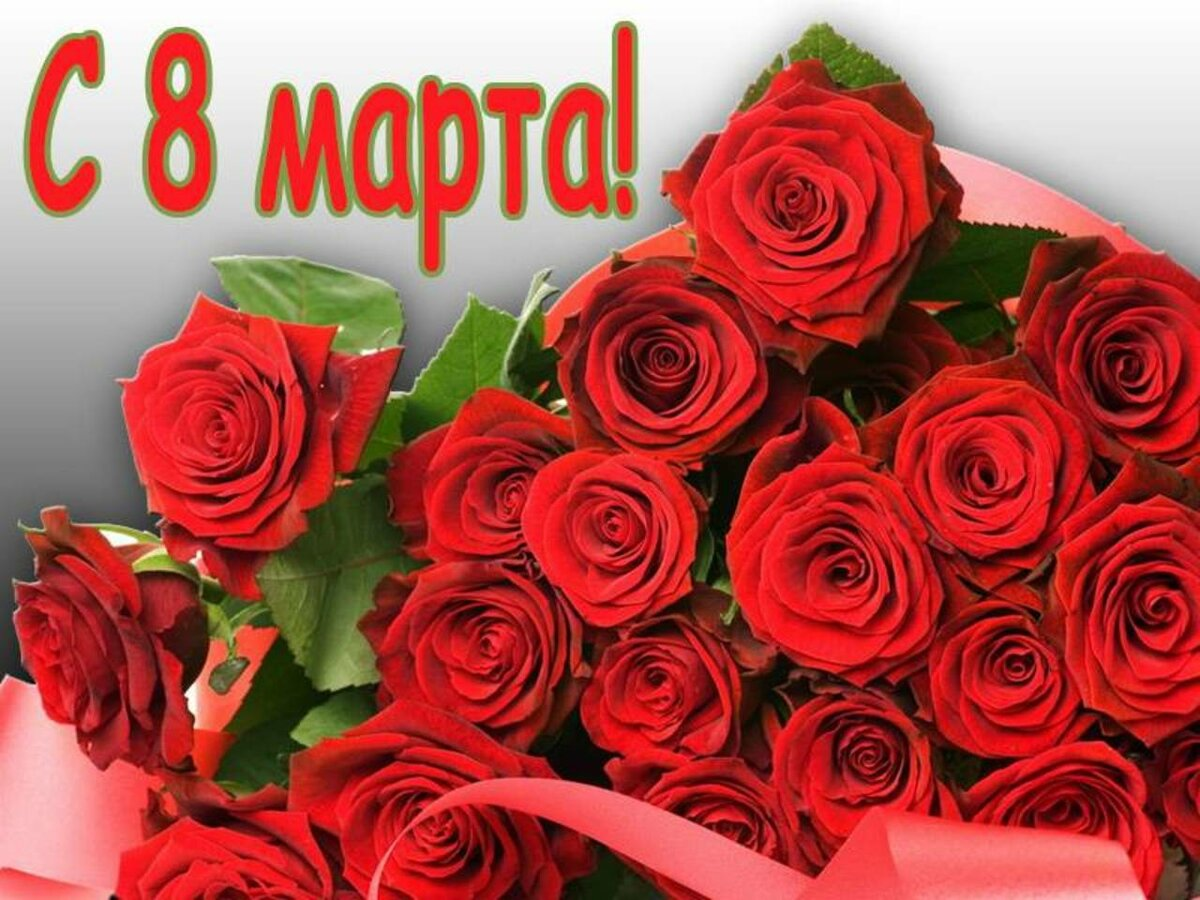 Днем рождения, открытка роза на 8 марта