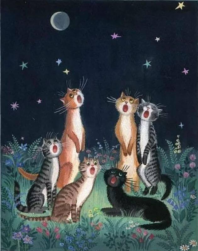 Ауди надписями, открытка поющий кот