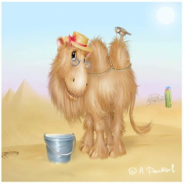 Открытка верблюд, картинки яндекс