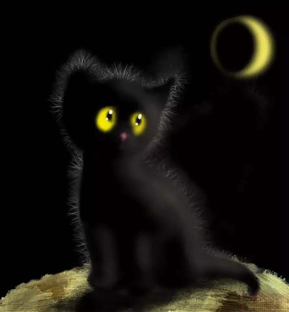 Открытки черные коты