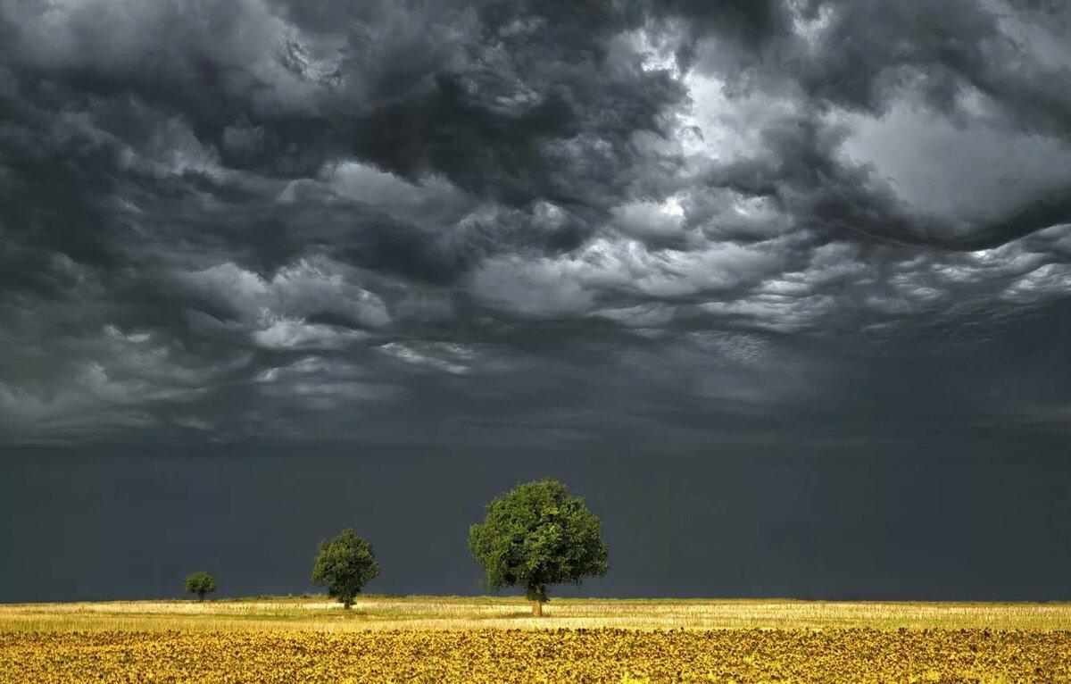 Картинки любимой о погоде самые