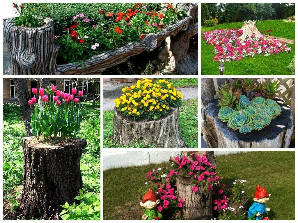 картинки цветников в саду своими руками интерьера