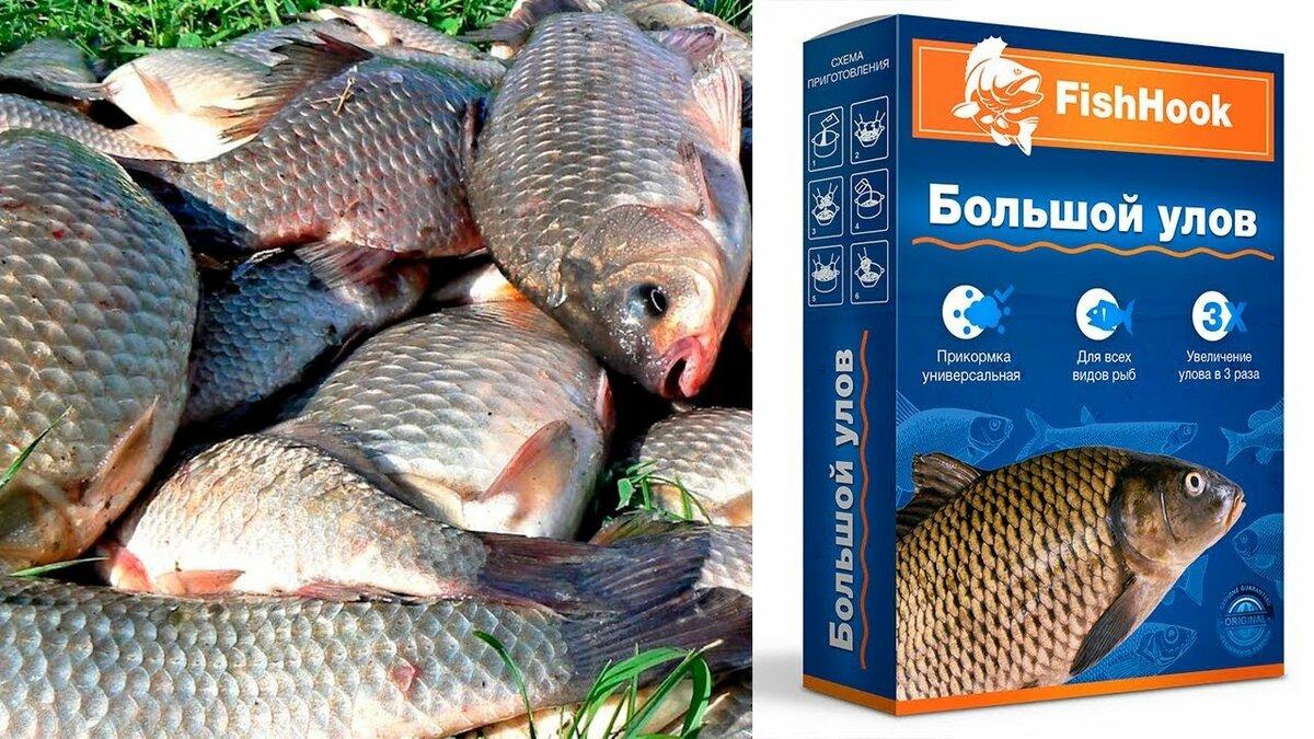 Большой улов FishHook в Черкесске