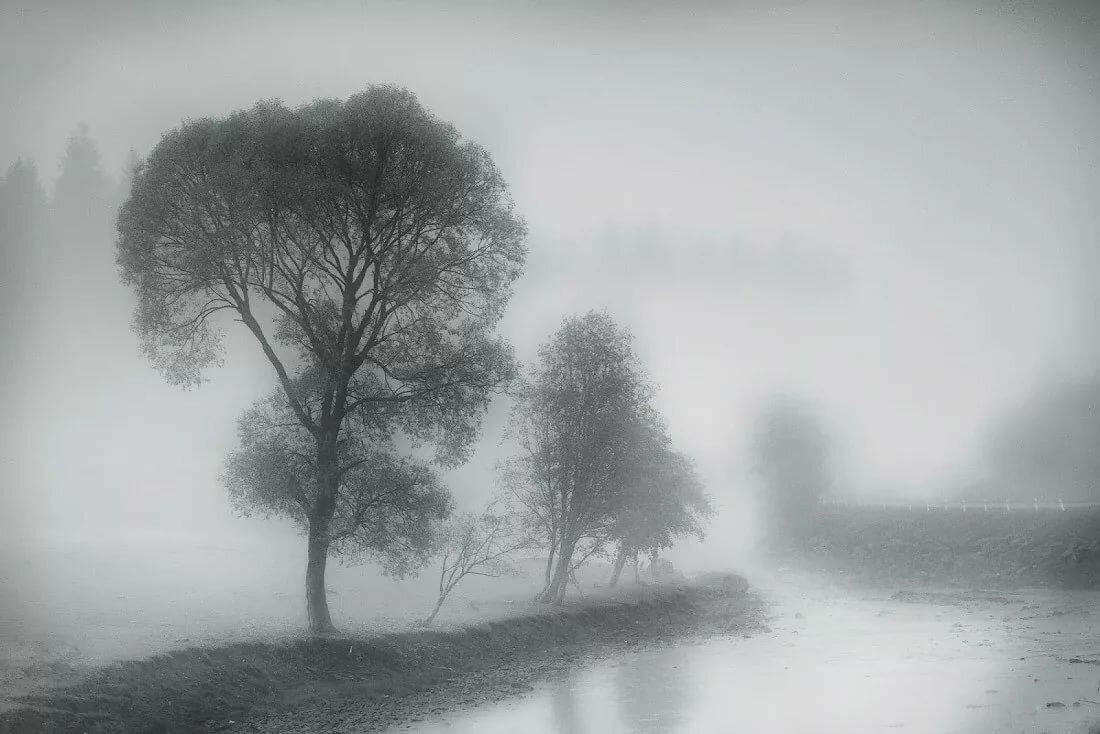 картинки иллюстрации туман днях как раз