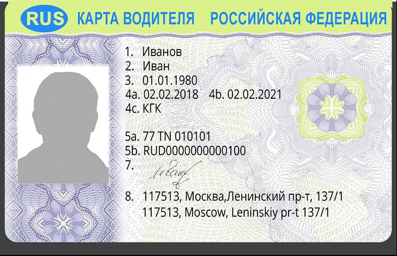 водительская карточка в картинках появился пороге белого