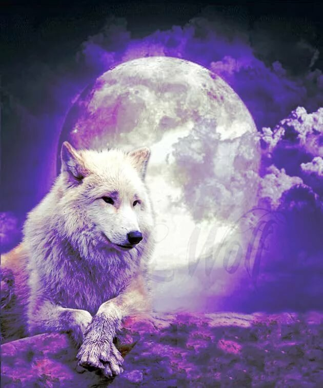 картинки волшебных волков на аву здоровья сердечно