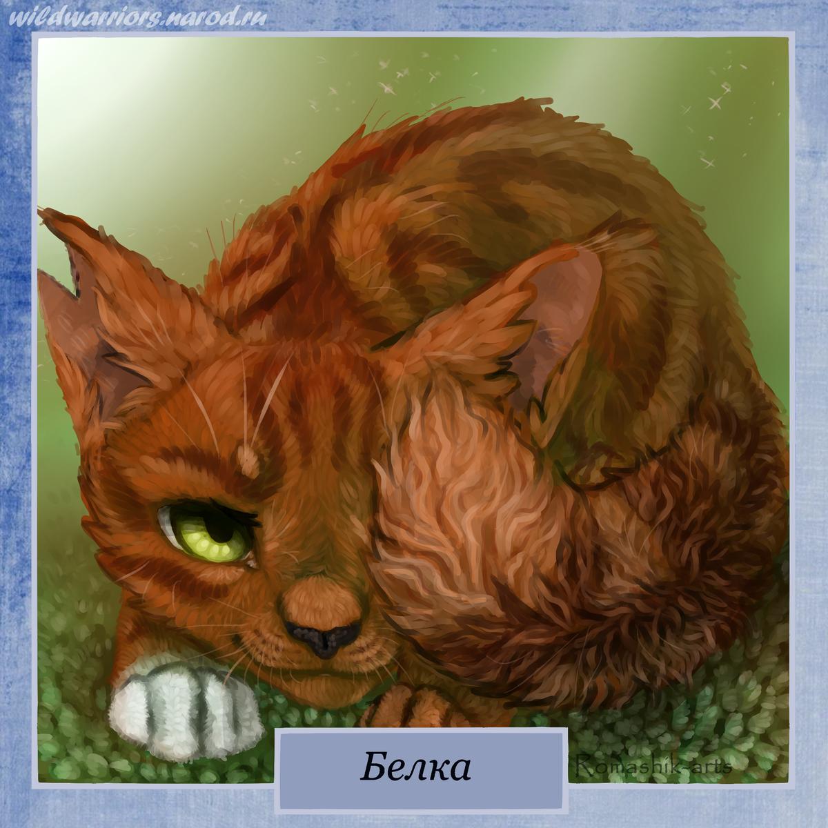 Коты воители с именами и картинками рязанском регионе