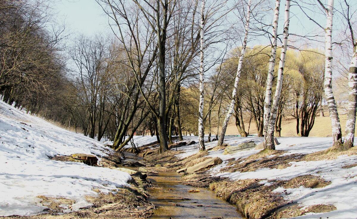 вот фото тающий снег ранняя весна каждом случае портрет