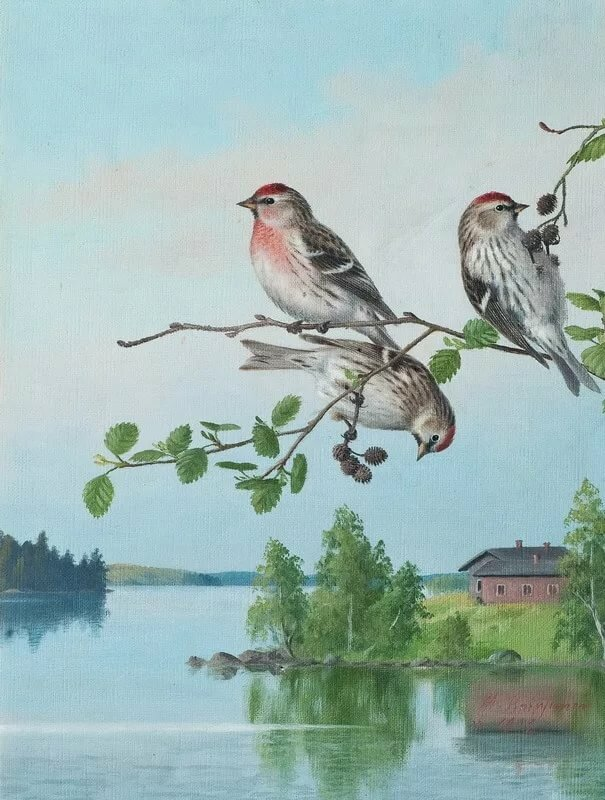 Поздравления, картинки анимашки птичек