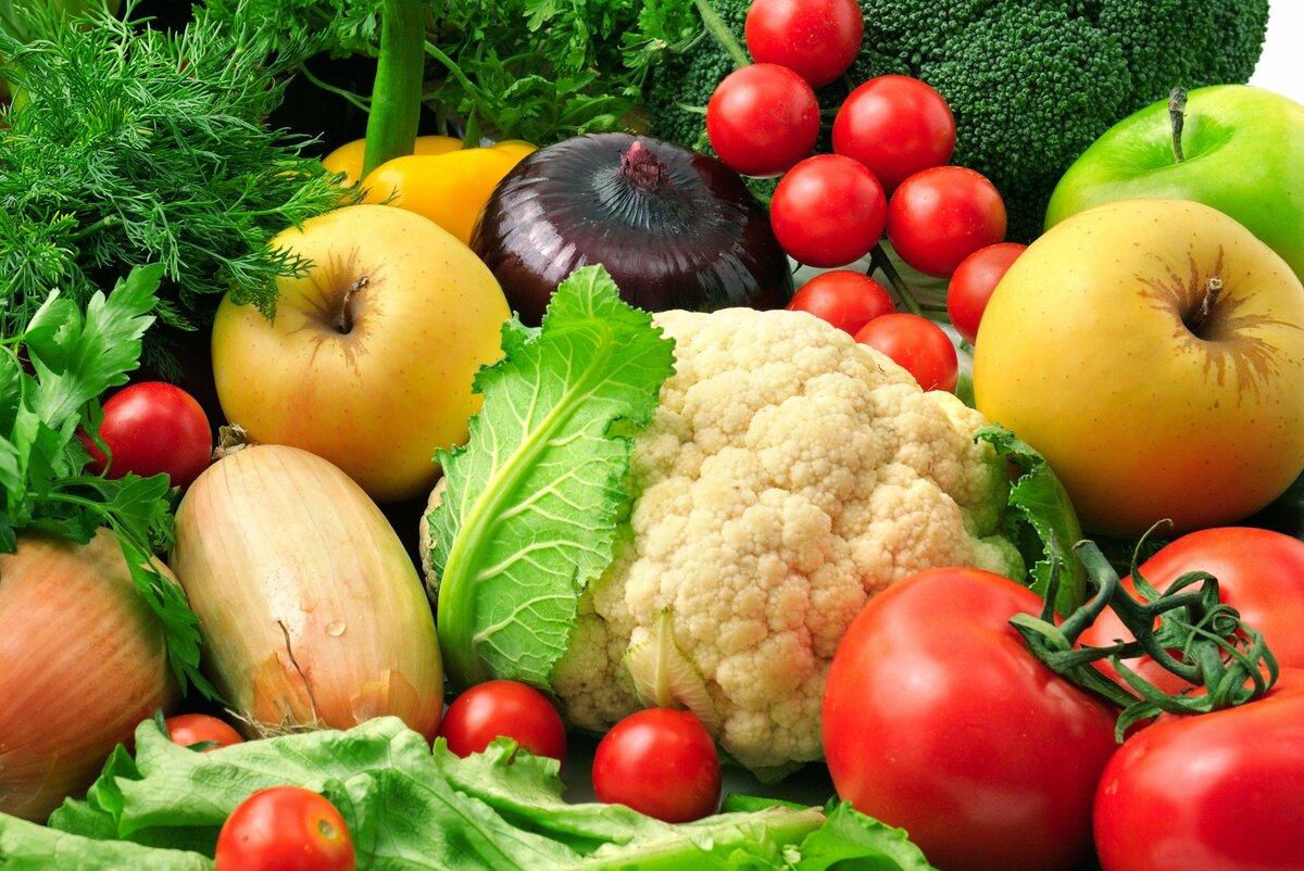 картинки про овощи большие самом деле шарф